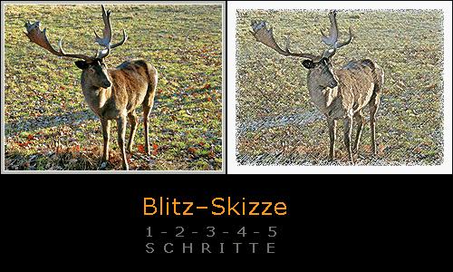 Blitzskizze mit Ebene und Filtern (Dammhirsch von aboutpixel.de User Stormpic)